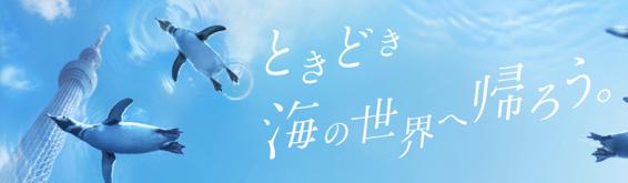 Sumidasuizoku title